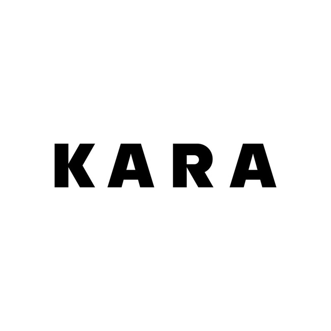 kara-novel-logo1000